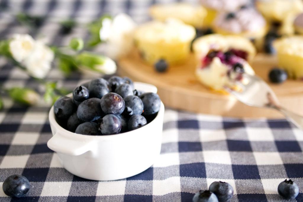 Panama Quadrat: Die Heidelbeersaison lässt sich am besten mit Blaubeer-Quark Cupcakes genießen.