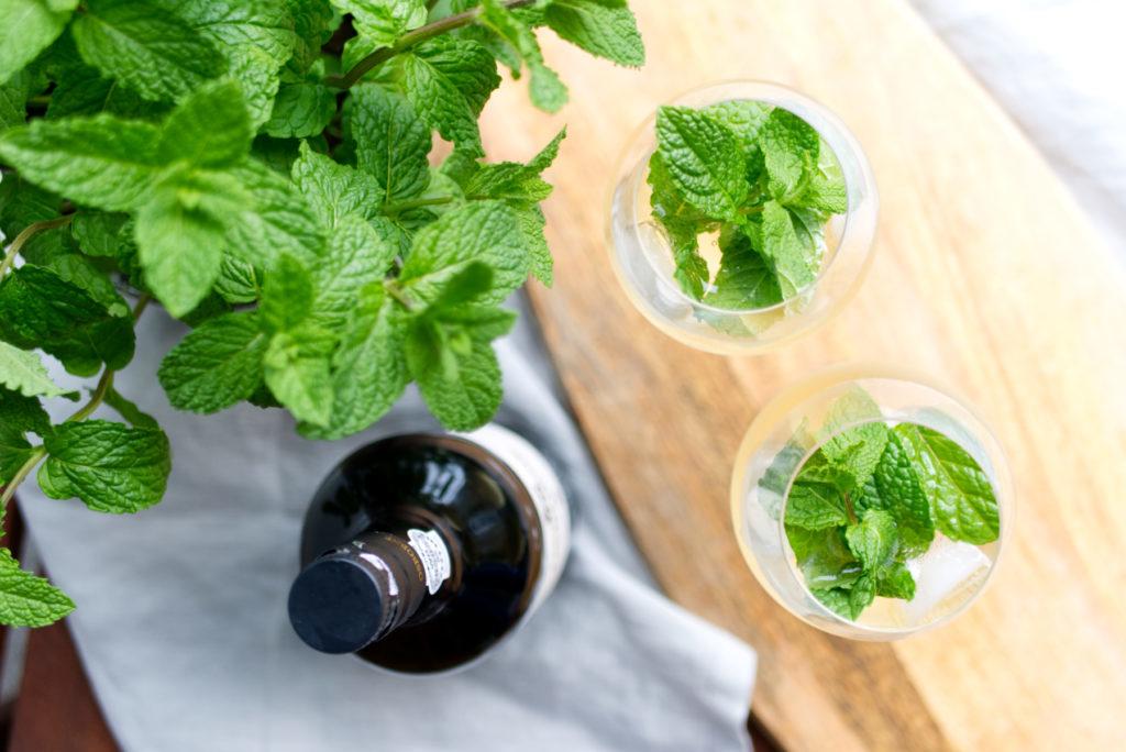 Cheers! Portwein Tonic mit Minze | Panama Quadrat